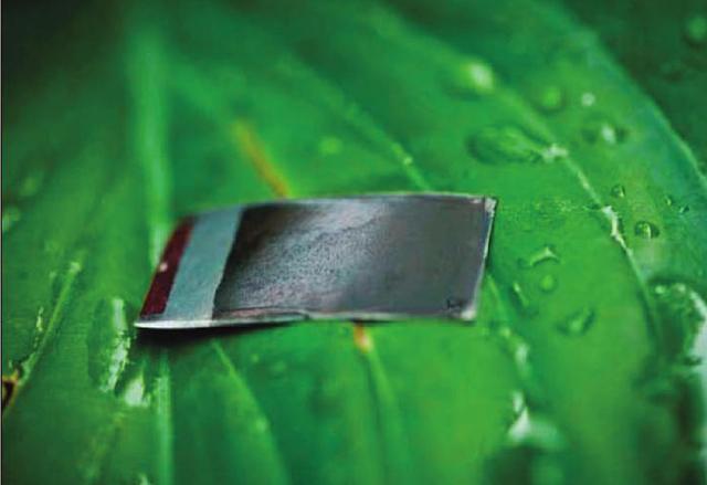 Учени създадоха нов, по-ефикасен метод за възпроизвеждане на изкуствена фотосинтеза