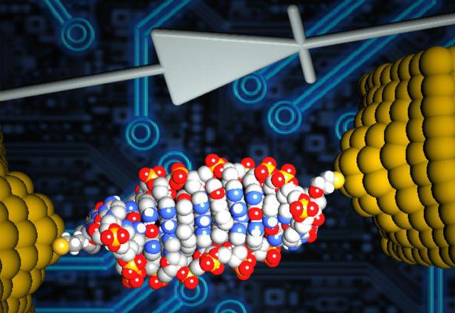Най-малкият диод в света е направен от ДНК