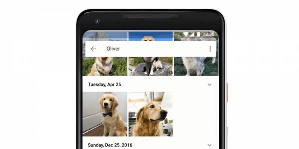 Google Photos вече може да открива снимките на вашето куче или котка