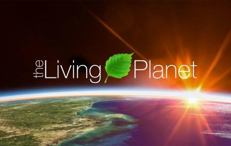 20 години сезонни промени на Земята протичат пред очите ни за две минути