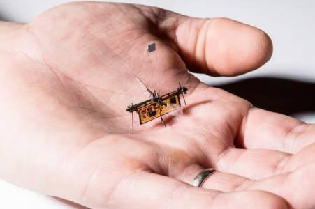 RoboFly е първото безжично летящо насекомо робот