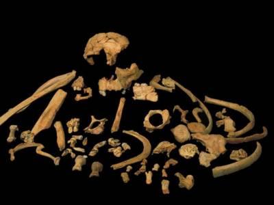 Най-старите открити човешки останки е Европа са на близо 1 милион години