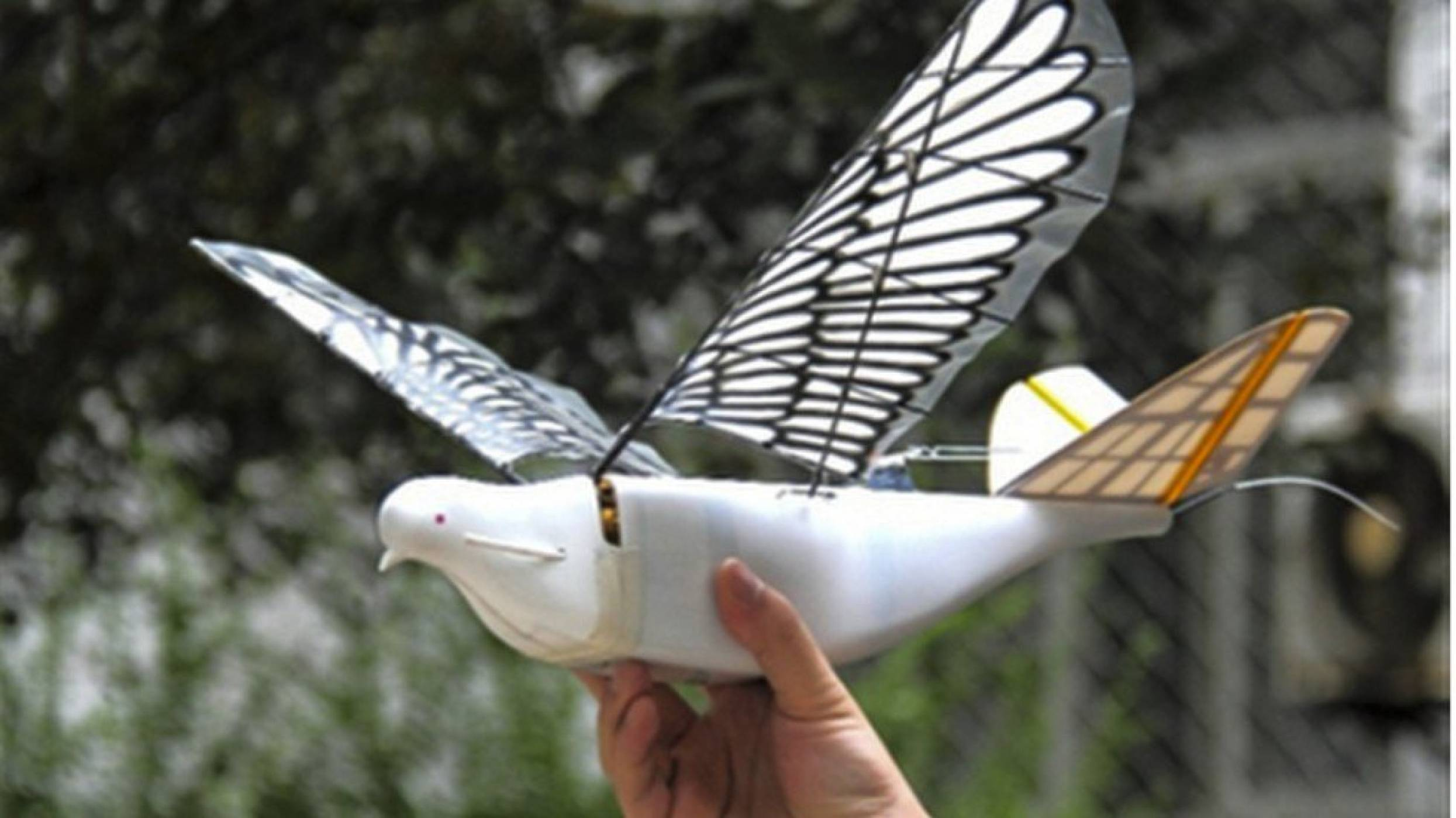 Ято от неуловими за радара птици роботи следи китайците от небето