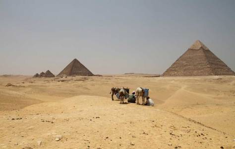 Археолози откриха в Египет най-старото сирене в света