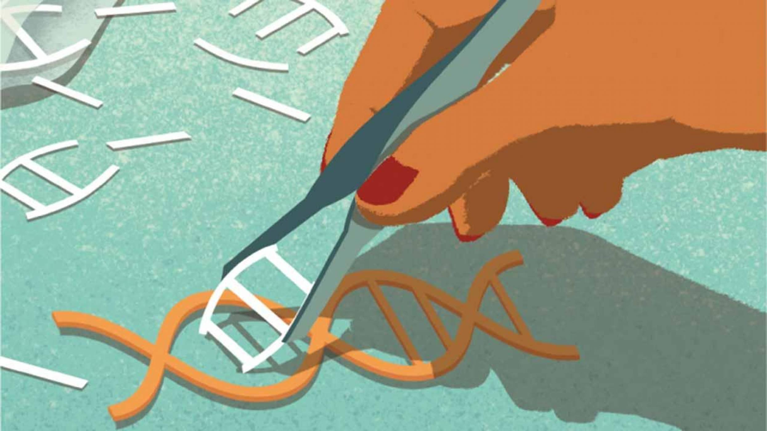 Тежка генетична мутация в човешки ембриони беше премахната с CRISPR