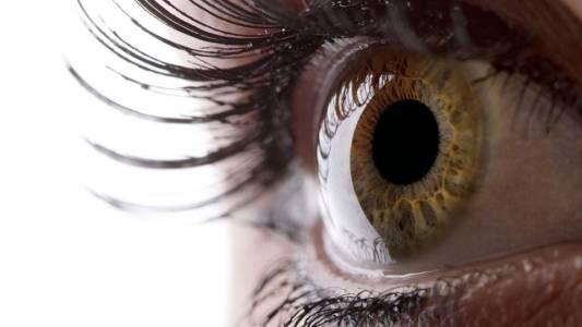 11 изключително забавни оптични илюзии, които ще объркат мозъка ви (ВИДЕО)