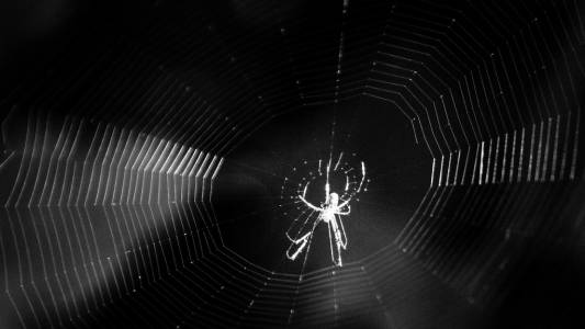 Хакер продава данните на един милиард души в Dark Web