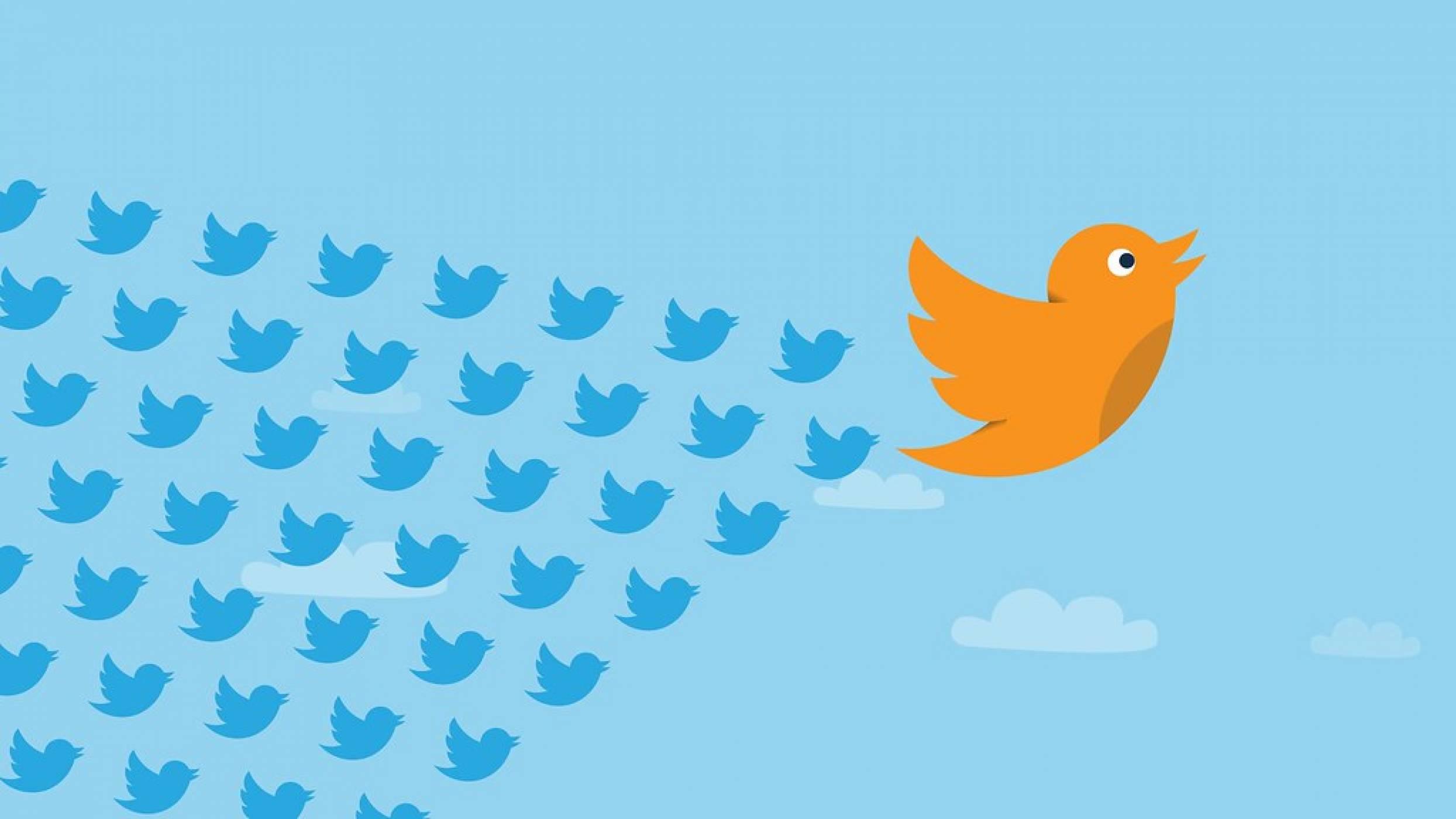 Twitter потребителят: по-умен, по-богат и по-млад от останалите