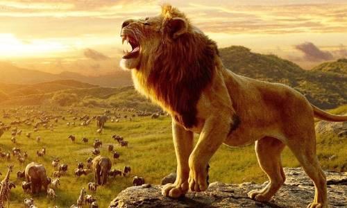 """""""Цар Лъв"""" изпревари Frozen и вече е най-успешният анимационен филм на Disney"""