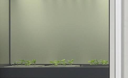 LG с уникално решение за домашно производство на зеленчуци и билки