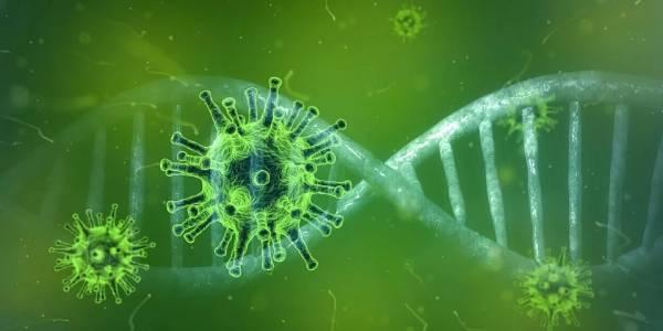САЩ създаде ваксина срещу коварния коронавирус