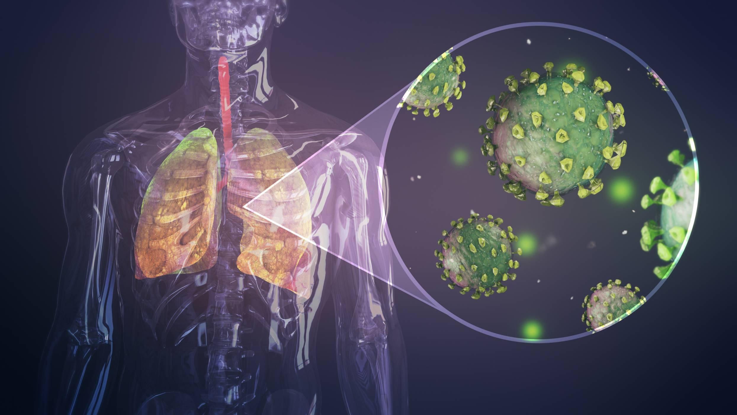 Този VR модел показва как изглежда COVID-19 в белите ни дробове (ВИДЕО)
