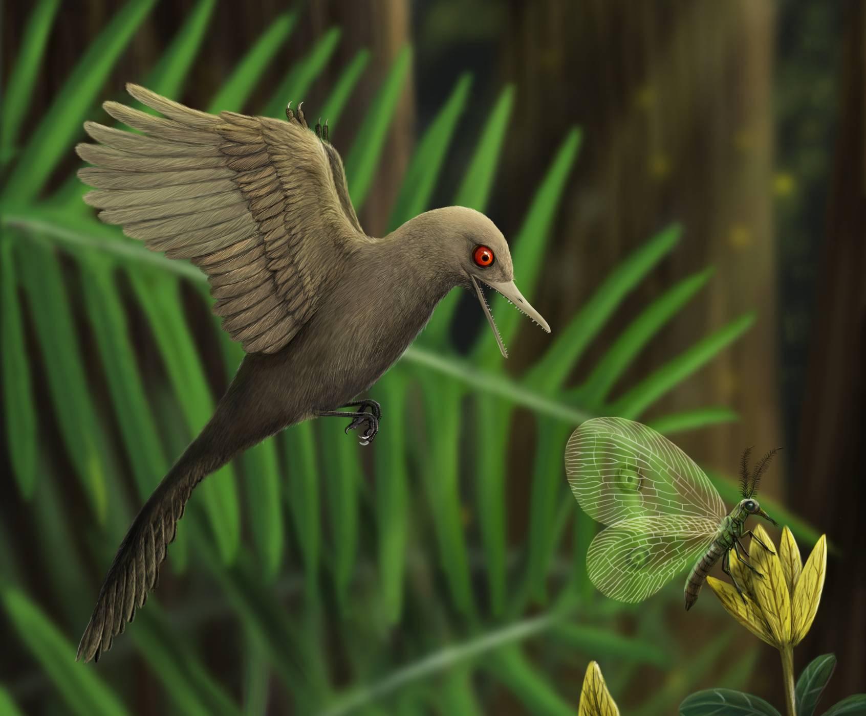 Учени откриха най-малкия динозавър, живял някога (ВИДЕО)