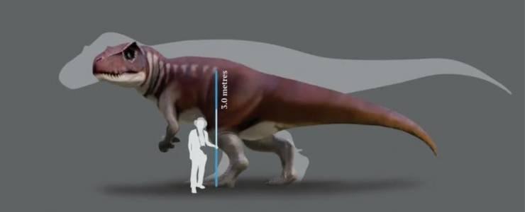 Сродник на Тиранозавър рекс е тероризирал Австралия