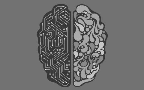 Свързването на човешки мозък и копютър през вените може да ни позволи да контролираме машини с умовете си
