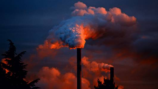 Замърсяването свива мъжкото достойнство, предупреждава учен