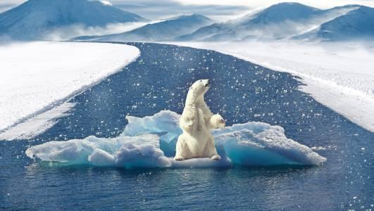 Климатичните изменения тихомълком са променили дори наклона на земната ос