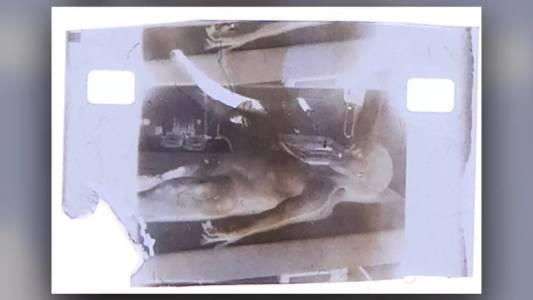 Филмов кадър от аутопсия на извънземно от 1947 г. се продаде като NFT