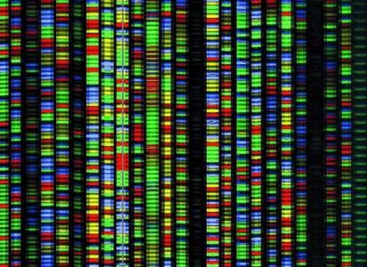 ДНК съхранението на данни може да реши сторидж дилемите на бъдещето