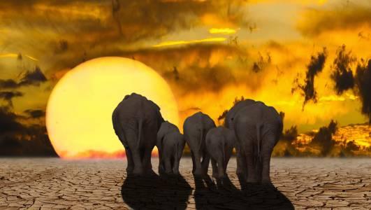 Земната атмосфера вече улавя безпрецедентно количество топлина