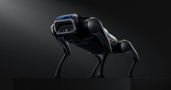 Нямаме нужда от роботи домашни любимци – нека използваме тази технология за нещо по-значимо