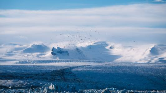 Доказаха, че арктическото затопляне ще означава по-студени зими