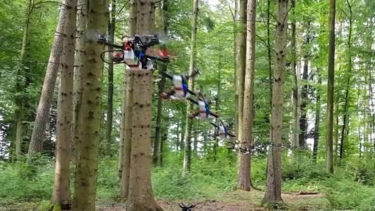 Вече не можете да се скриете от дроновете дори в гората